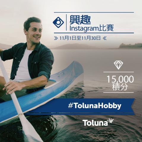 tolunahobby_hk